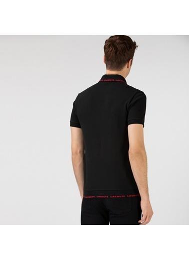 Lacoste Erkek Baskılı Tişört PH0144.44S Siyah